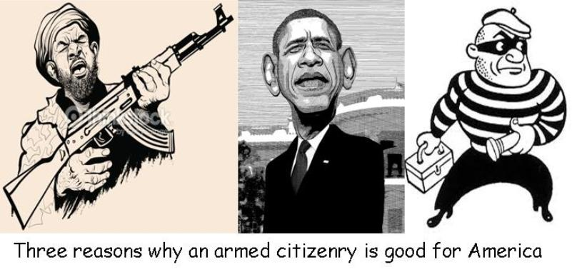 Armed citizen reason